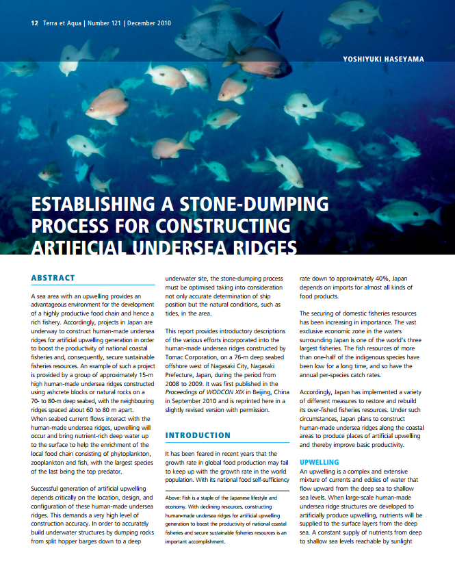 Establishing a Stone-dumping Process for Constructing Artificial Under sea Ridges