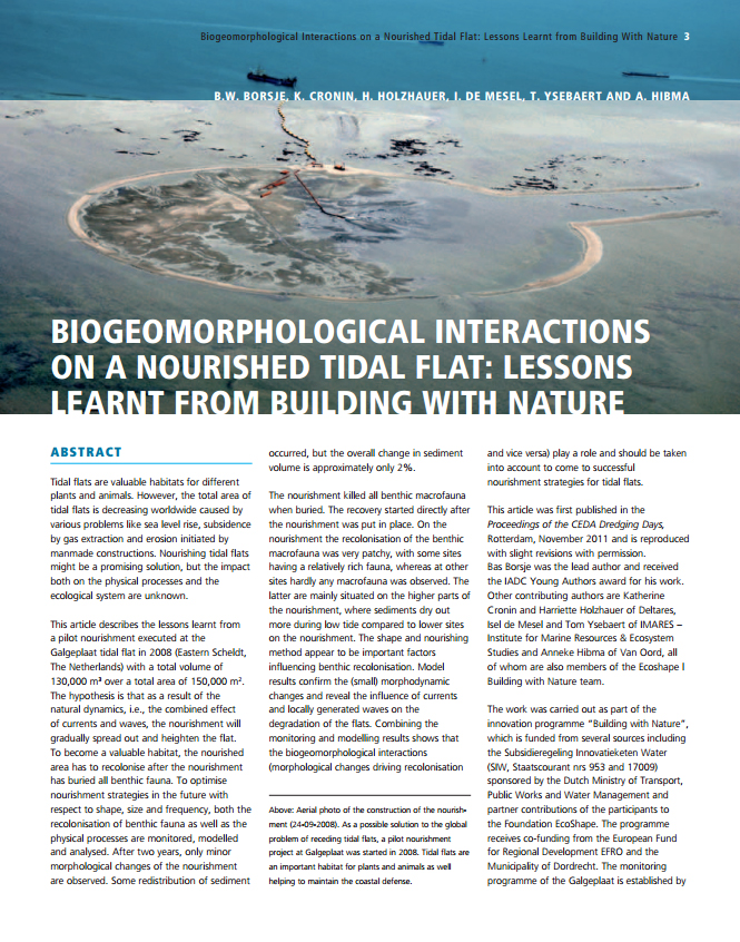 Biogeomorphological Interactions on a Nourished Tidal Flat: Lessons Learnt from Building With Nature